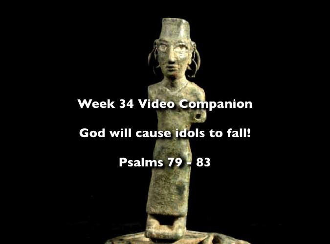 Week 34 Companion 2012