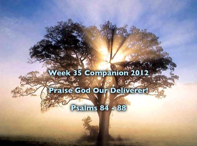 Week 35 Companion 2012