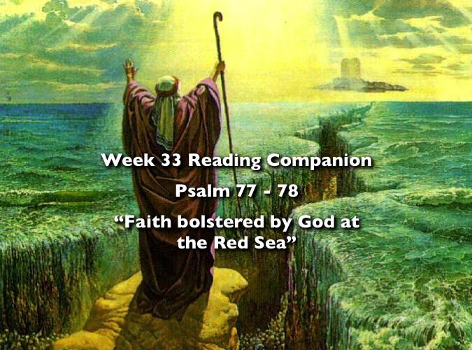 Week 33 Companion 2012