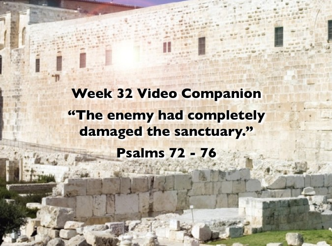 Week 32 Companion 2012