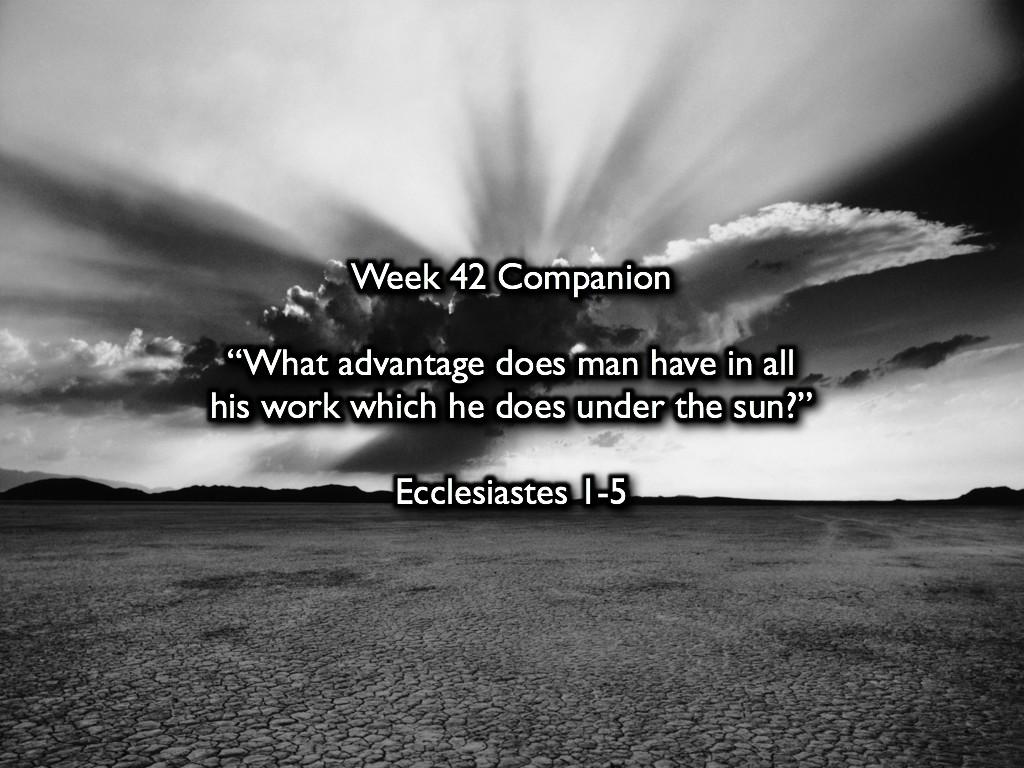 Week 42 Companion 2012