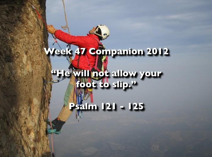 Week 47 Companion 2012
