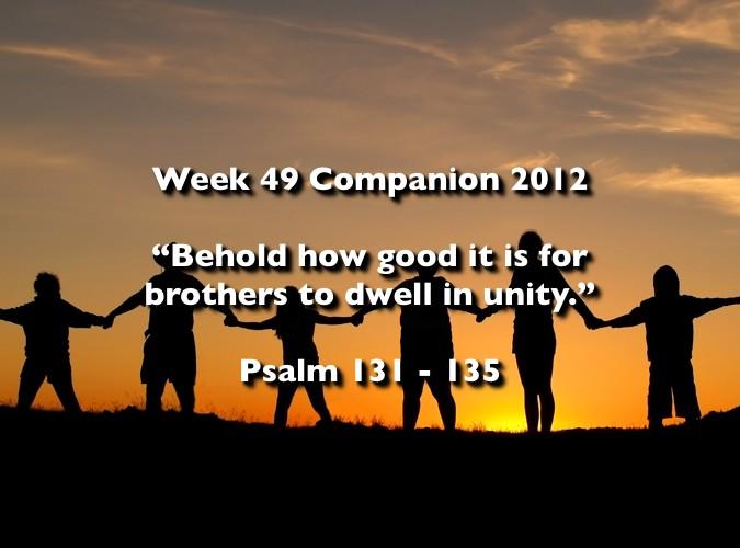 Week 49 Companion 2012