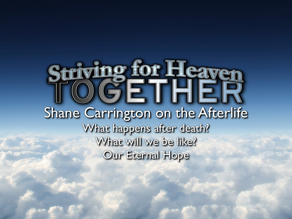 Shane Carrington on The Afterlife