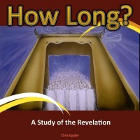 How Long – A Study of the Revelation