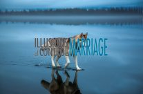 Illusions of Control – Marriage