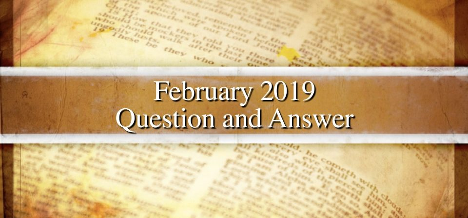February 2019 Question and Answer