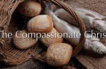 The Compassionate Christ