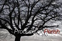 Produce or Perish