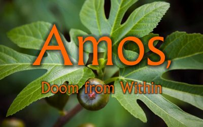 Amos – Doom from Within