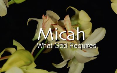 Micah – What God Requires